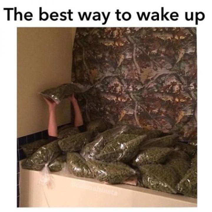 Too loud to sleep #heaven #cannabis #marijuana @w420 #420 #710 #dabs #mmj…