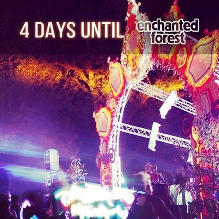 We will be smoking all day @enchantedforestgathering …